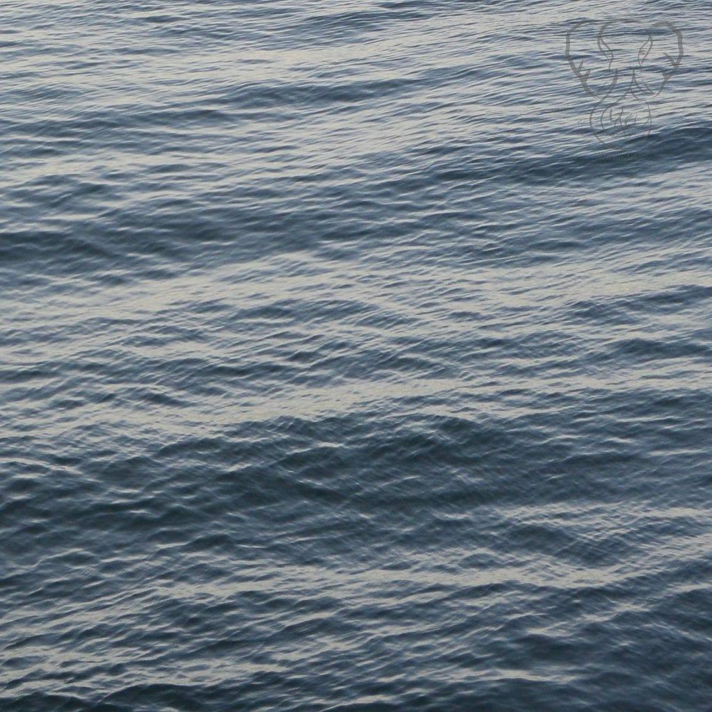 Pacific Ocean - Feature