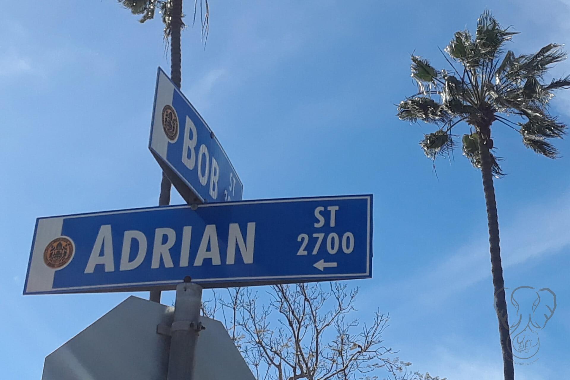 Adrian Street sign in San Diego, California (Miranda Hernandez)