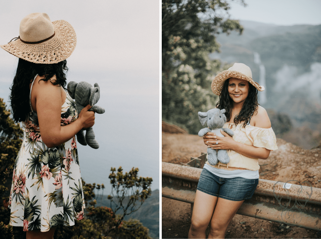The photoshoot took the form of an traveling exploration up Waimea Canyon, then down to the sea. I took photos with Adrian's elephant at each location (Luna Kai Photography)