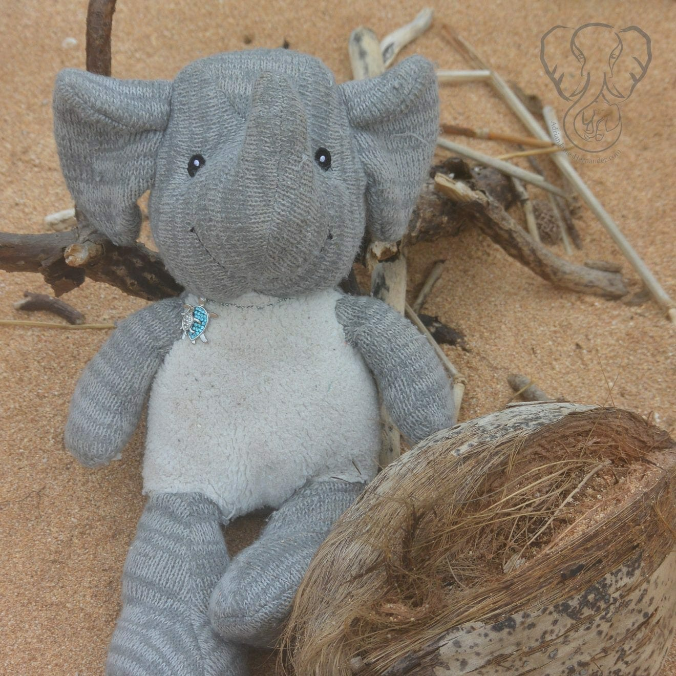 Adrian's Elephant on Keālia Beach in Kaua'i, Hawai'i (Miranda Hernandez)