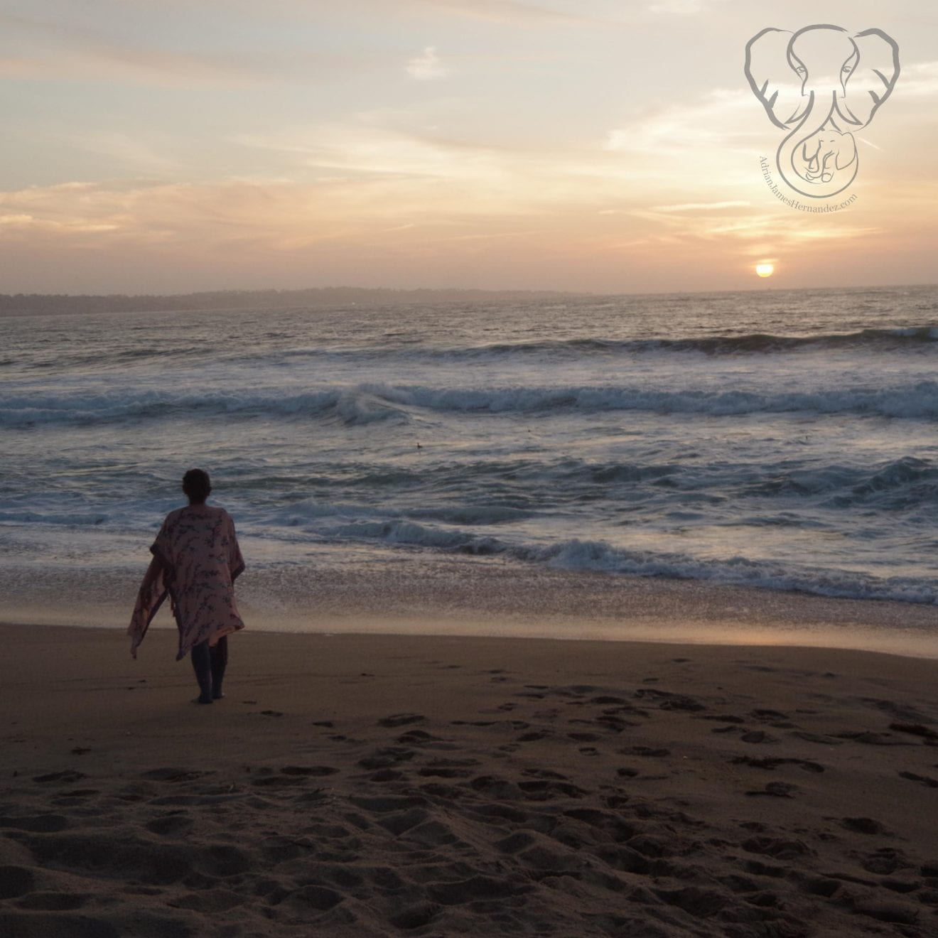 Wide angle view of Miranda standing on a deserted beach in California at sunset. She is wearing a pink kimono fluttering in the breeze (Synch Media)