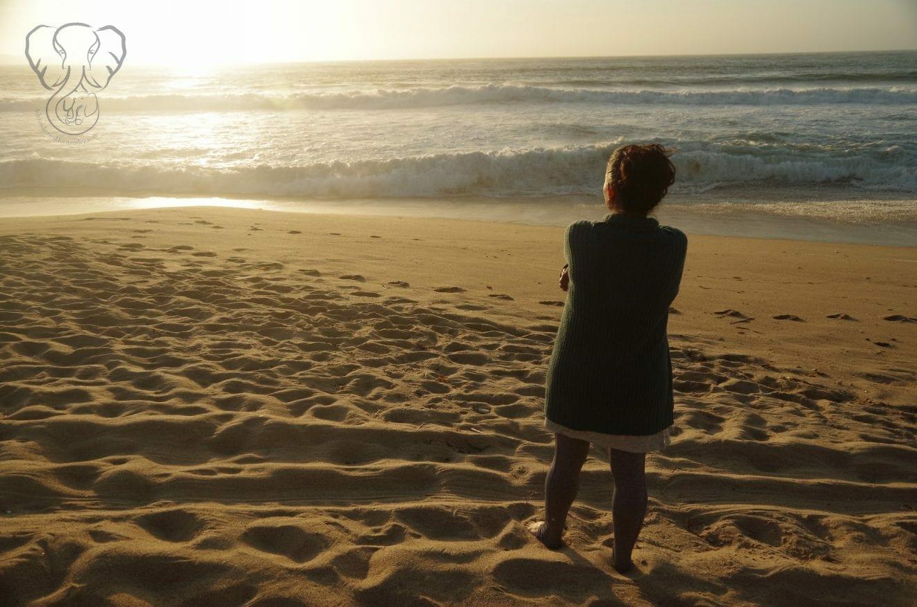 Miranda on the Pacific Coast in California 3