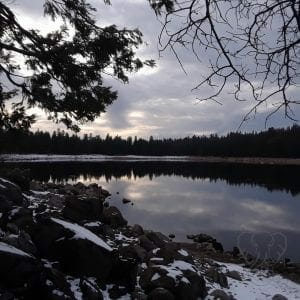 Pinecrest Lake 1 - Feature