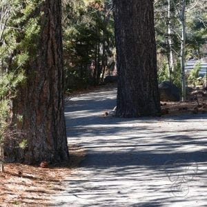 Incline Village, North Lake Tahoe - Feature