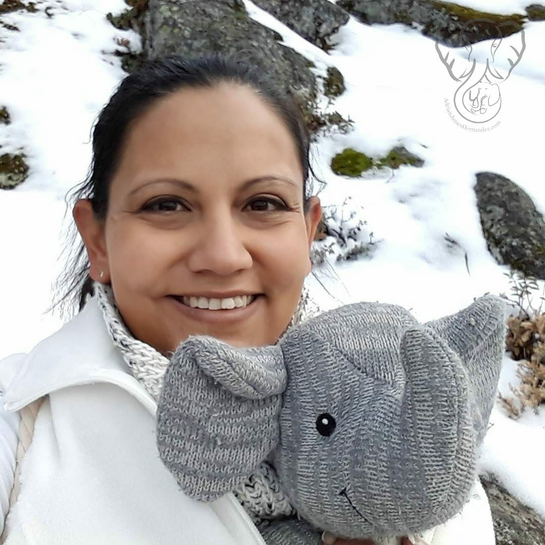Miranda and Adrian's Elephant at Pinecrest Lake