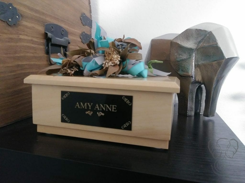 Amy Anne's Ashes