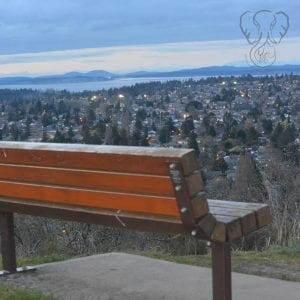 Rear view of a wooden bench looking out over Victoria, British Columbia at Sunset (Miranda Hernandez)