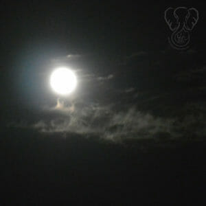 Full moon on a dark night, with clouds in front of the moon (Miranda Hernandez)