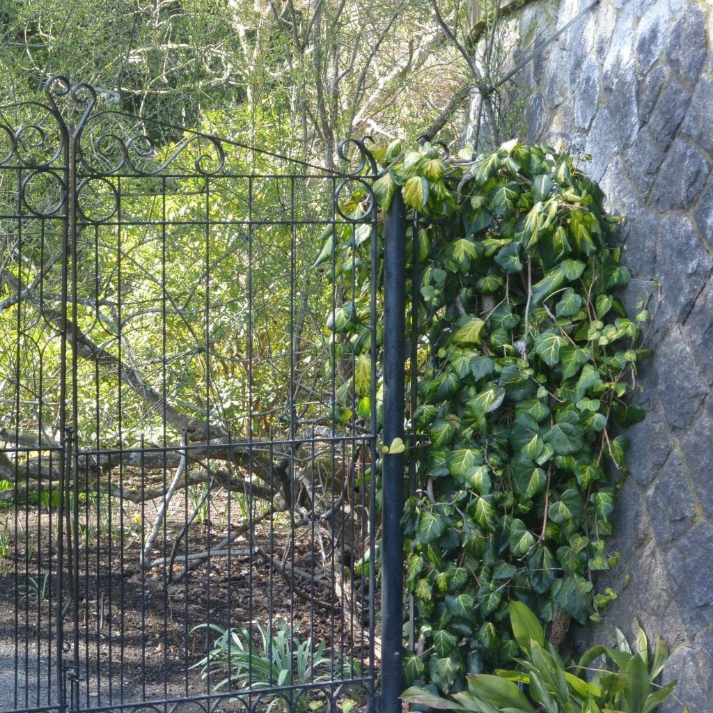 Fenced walkway at Hatley Castle, Victoria, British Columbia (Miranda Hernandez)