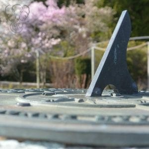 Close up image of a sundial in Hatley Park, Victoria, British Columbia. The sundial is weathered and made of gray stone. There are trees with pink blossoms in the background (Miranda Hernandez)