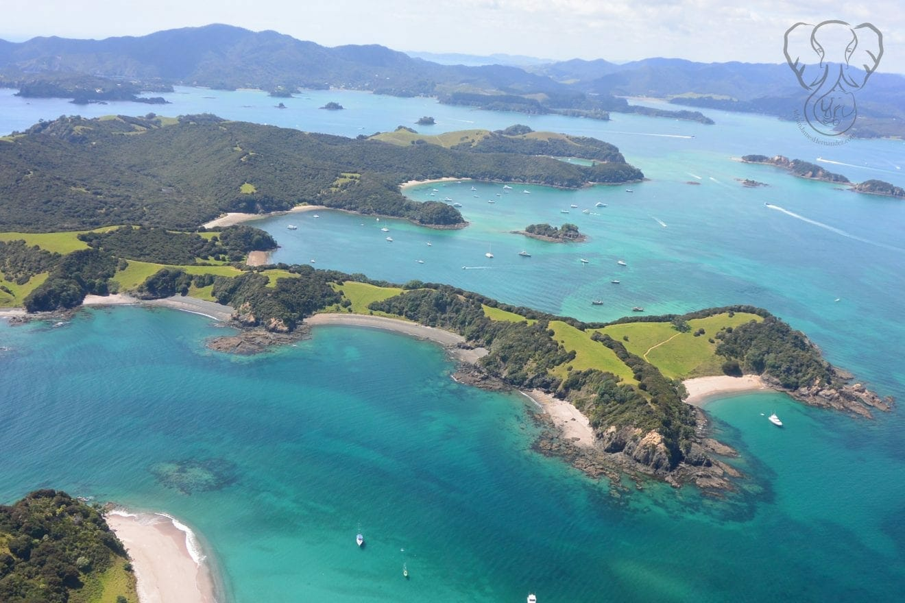 Aerial view of the Bay of Islands, New Zealand, as taken from a helicopter. There are small islands in view, surrounded by clear blue-green water (Miranda Hernandez)