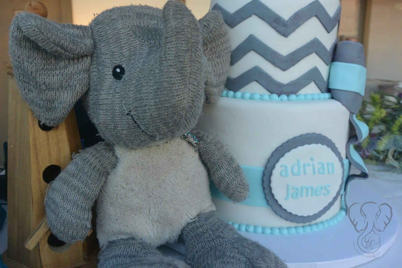 Close up of Adrian's Elephant and Adrian's first birthday cake.  The cake is white with teal and gray decorations. (Miranda Hernandez)