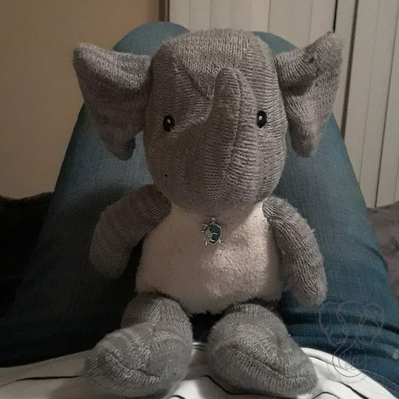 Close up of Adrian's Elephant on Miranda's lap. Miranda is wearing blue jeans and white shirt, and Elephant is sitting in her lap facing the camera (Miranda Hernandez)