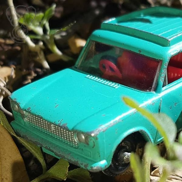 Toy car hidden in the grass