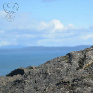 Cliff overlooking the ocean on a clear day (Miranda Hernandez)