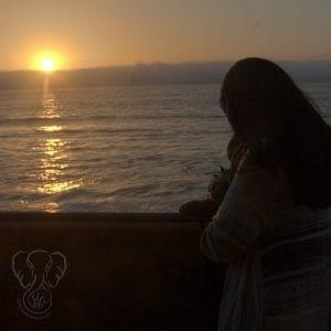 Miranda and Adrian's Elephant on the California coast(Synch Media)