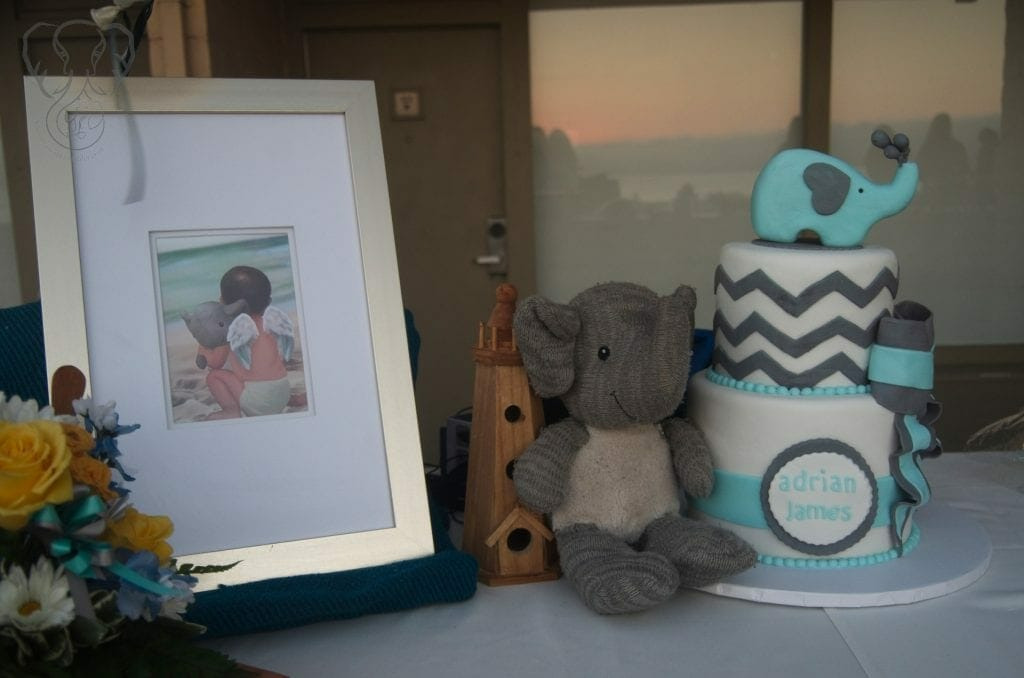 Adrian's Elephant and his birthday cake (Miranda Hernandez)