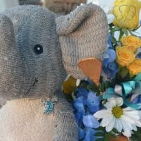 Adrian's Elephant and a flower arrangement from his birthday (Miranda Hernandez)