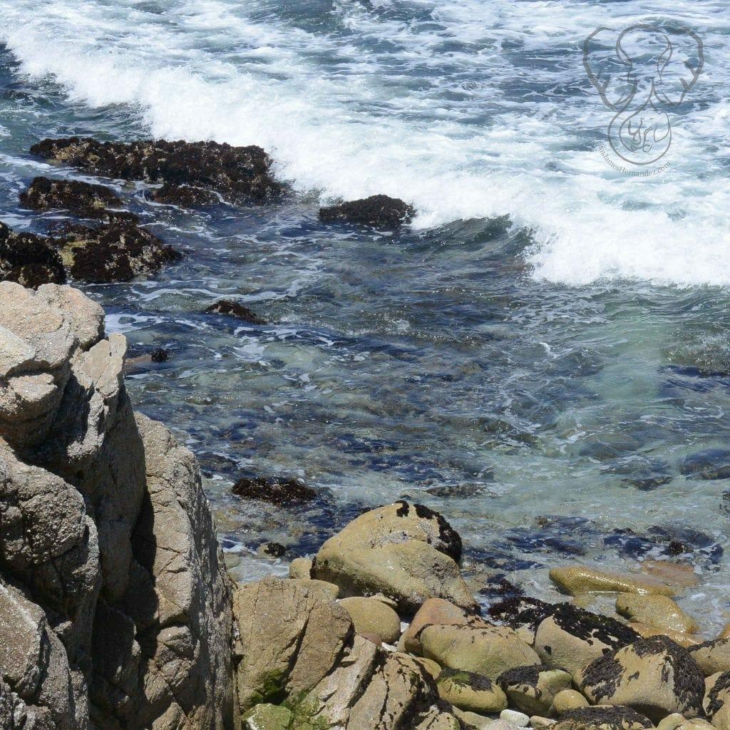 Rocks on the California Coast (Miranda Hernandez)