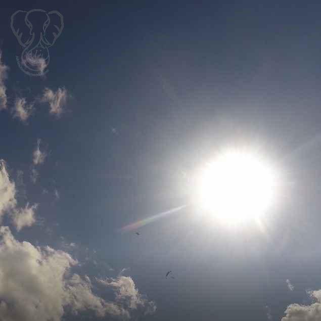 Clouds, San Antonio (Skydive Lone Star) https://skydivelonestar.com/