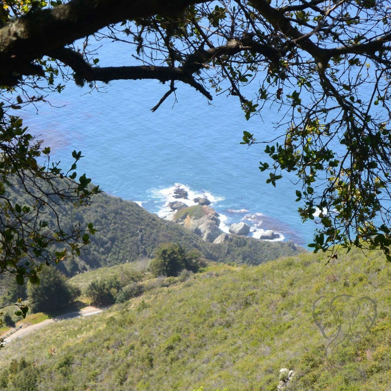 California Coast, Big Sur (Miranda Hernandez)