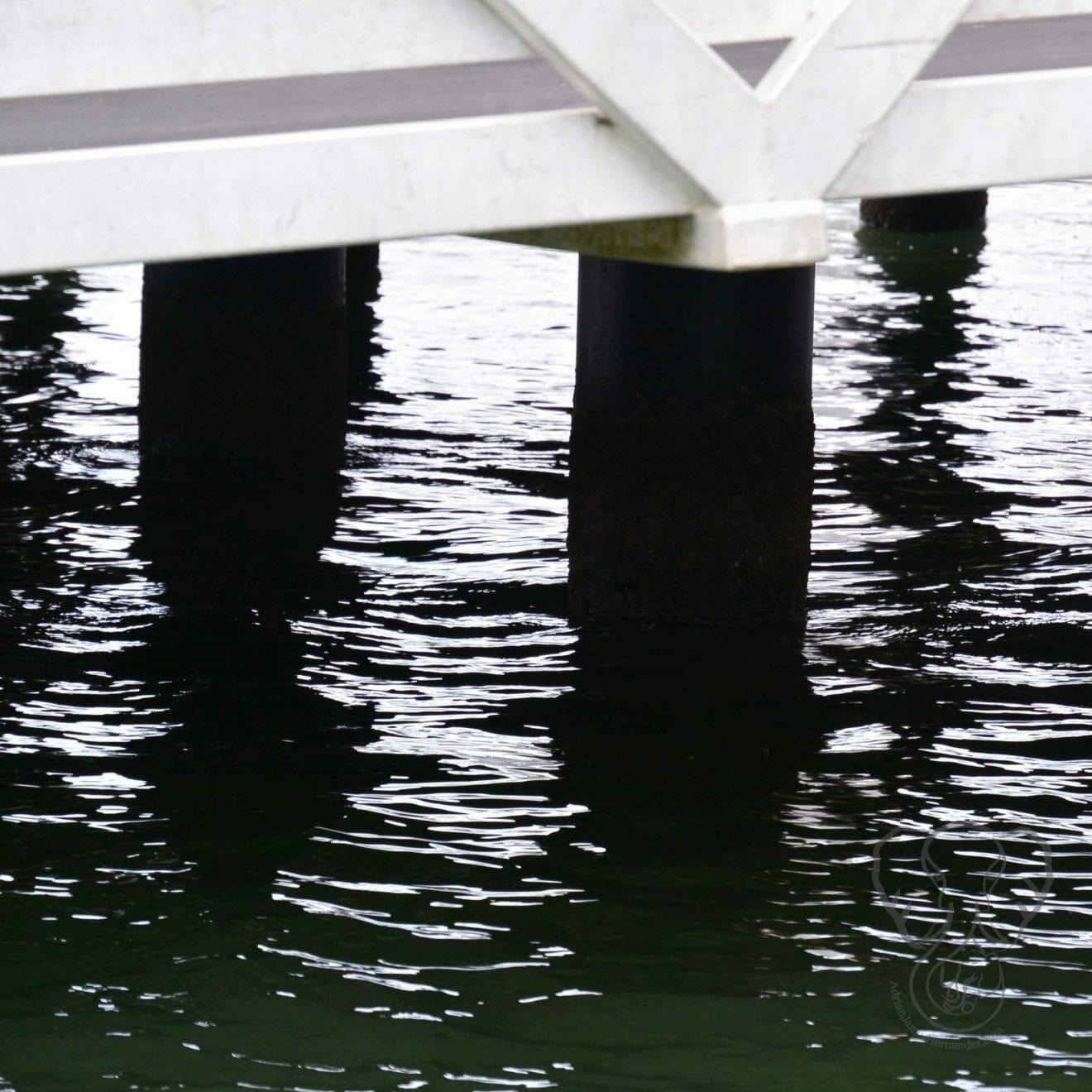 Pier, Paihia, New Zealand (Miranda Hernandez)