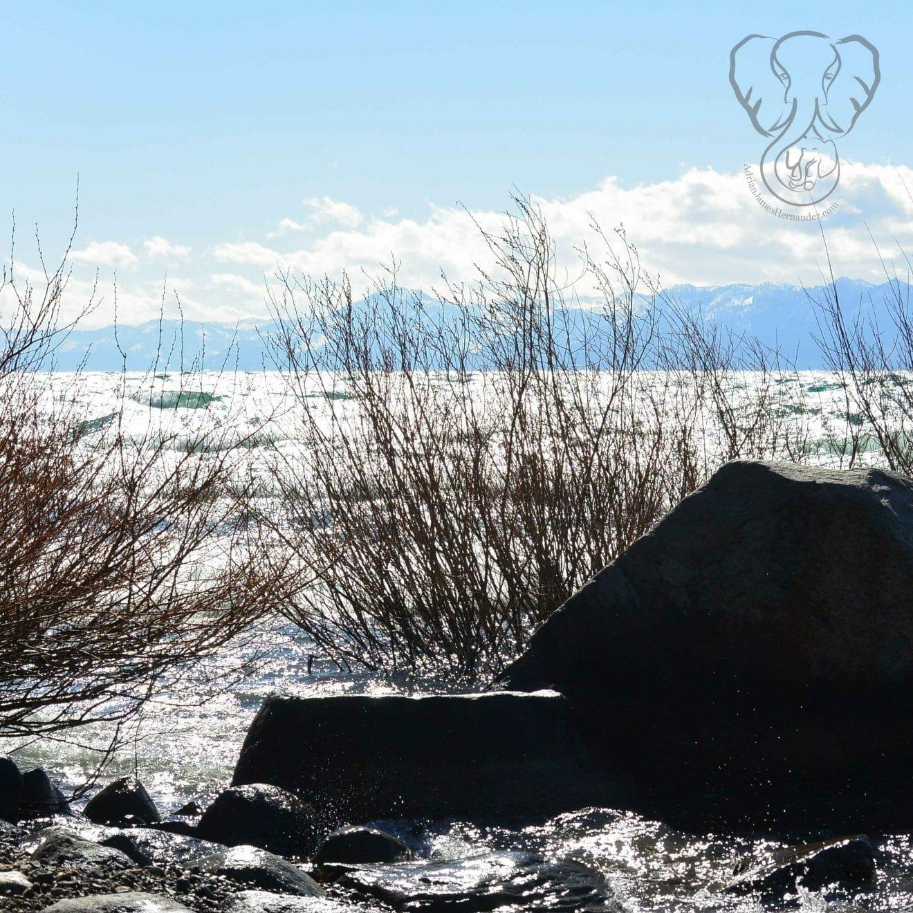 Boulder on the shore of North Lake Tahoe, California (Miranda Hernandez)