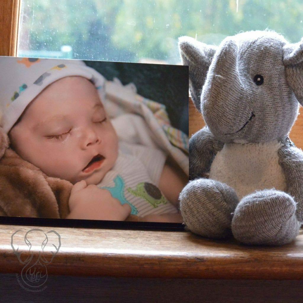 Adrian's Elephant and his photo at St Katharines's Parmoor, Buckinghamshire, England (Miranda Hernandez)
