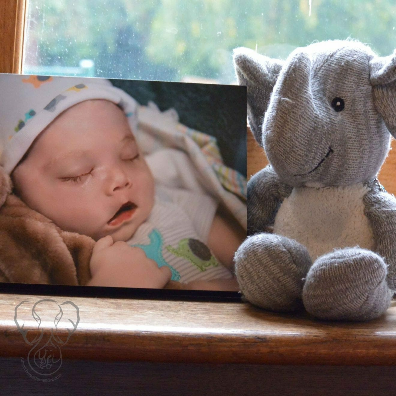 Adrian's Elephant and his photo at St Katharines's Parmoor, Buckinghamshire, England (Miranda Hernandez)