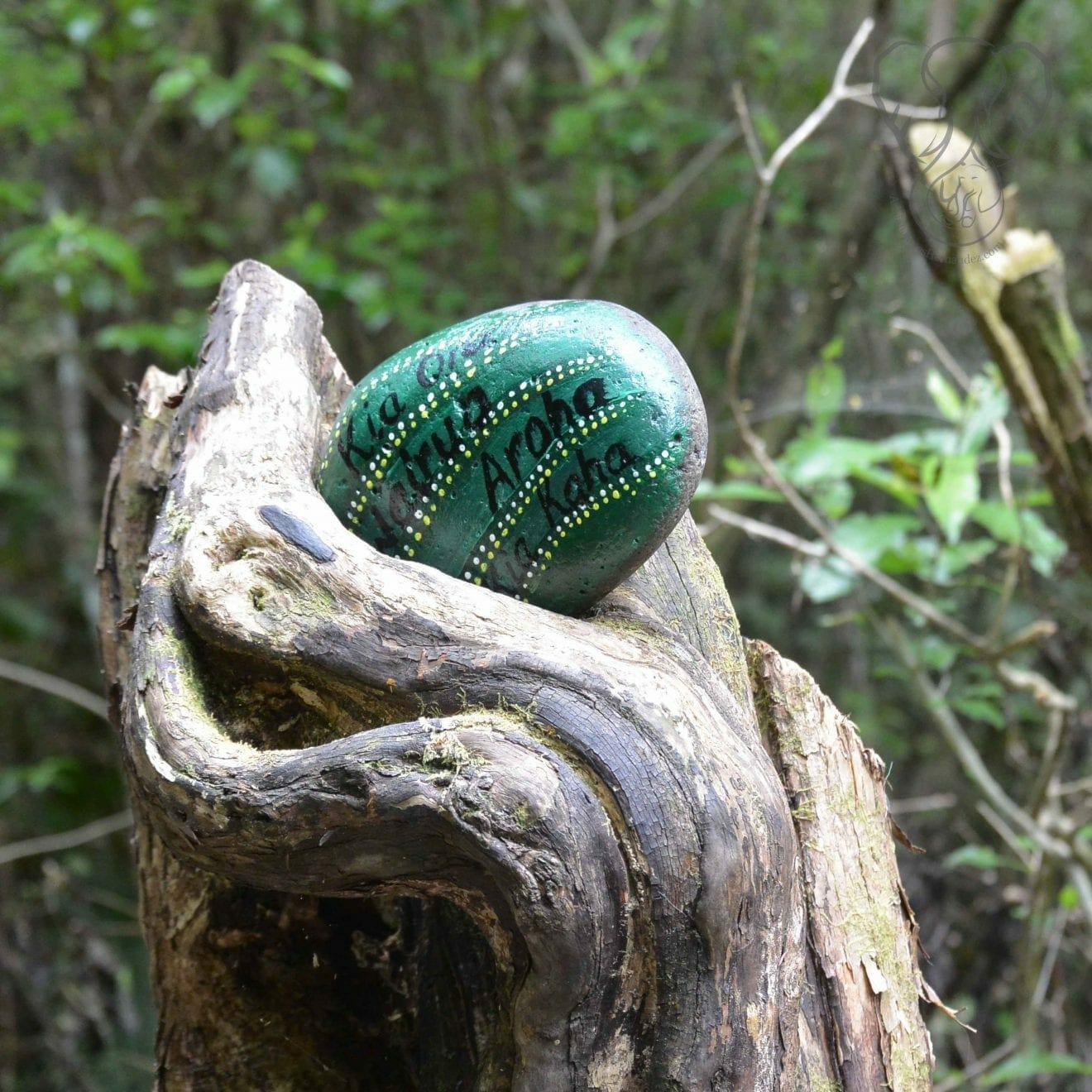 Painted rock found on the Haruru Falls trail, Waitanga, New Zealand (Miranda Hernandez)