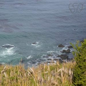 California coast in Big Sur, California (Miranda Hernandez)