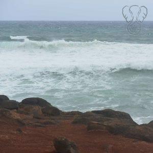 Kaua'i coast (Miranda Hernandez)