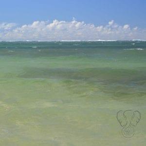 Anini Beach, Kaua'i, Hawai'i (Miranda Hernandez)