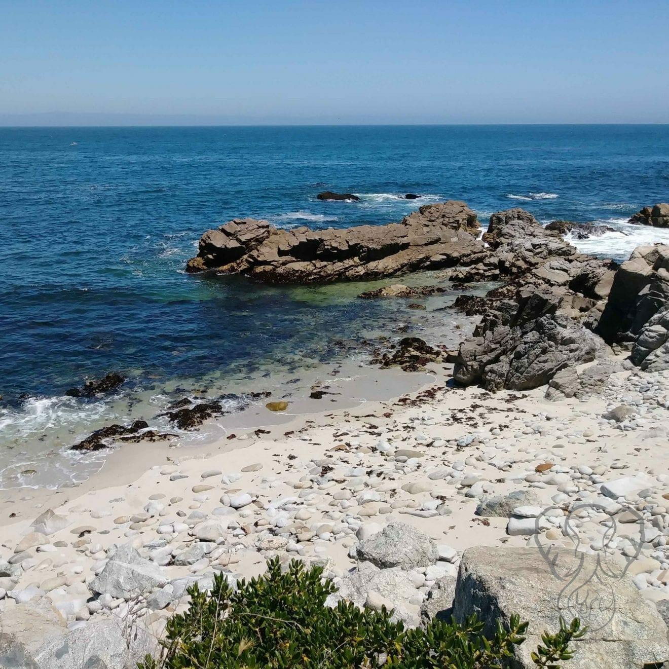 California coast (Miranda Hernandez)