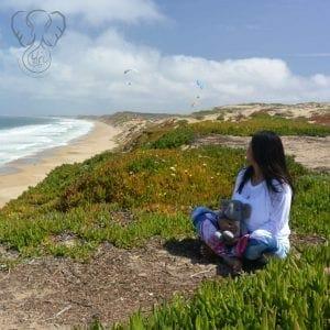 Miranda and Adrian's Elephant on the California coast (photo used with permission)