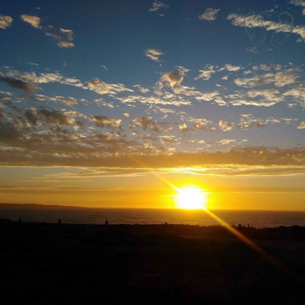 Sunset in California (Miranda Hernandez)