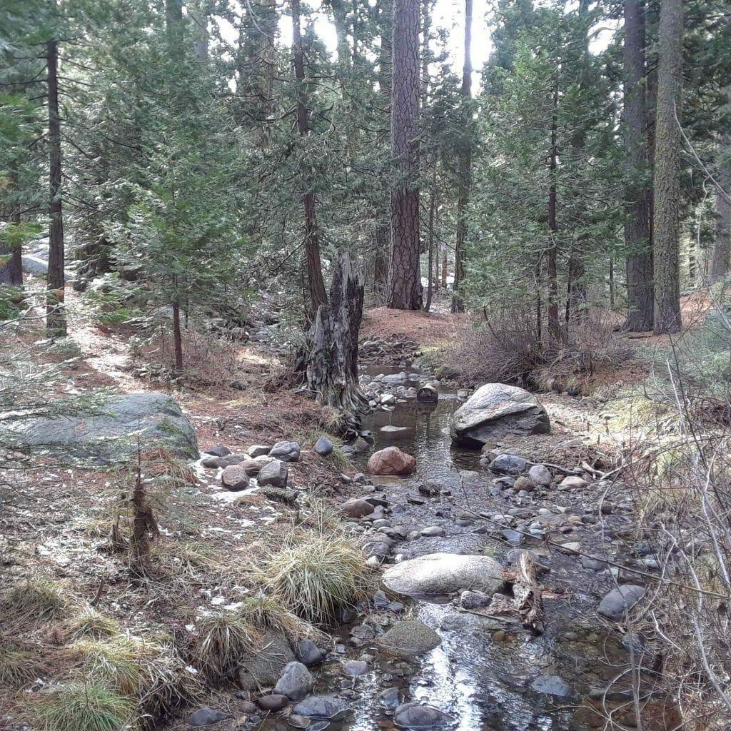 Hiking in Pinecrest, California (Miranda Hernandez)