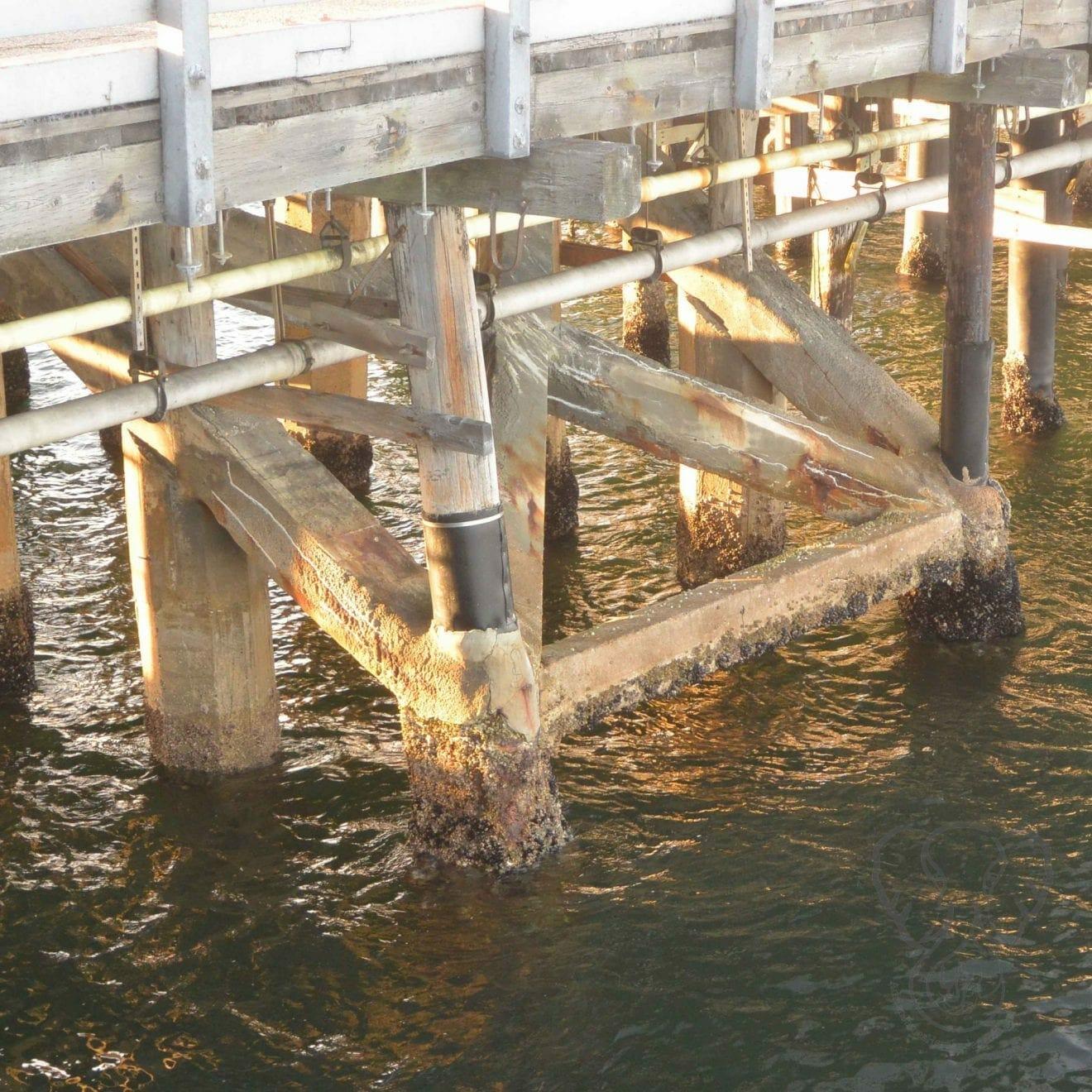 Pier in San Diego, California (Miranda Hernandez)