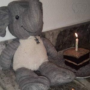 Adrian's Elephant and Miranda's birthday cake