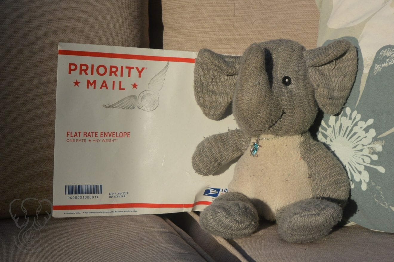 Adrian's Elephant sitting on a chair outdoors with a Priority mail envelope. The envelope has the Engrave Ink logo stamped on it. It holds the tattoo ink mixed with Adrian's ashes (Miranda Hernandez)