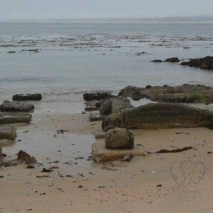 Remnants of a building, California coast (Miranda Hernandez)