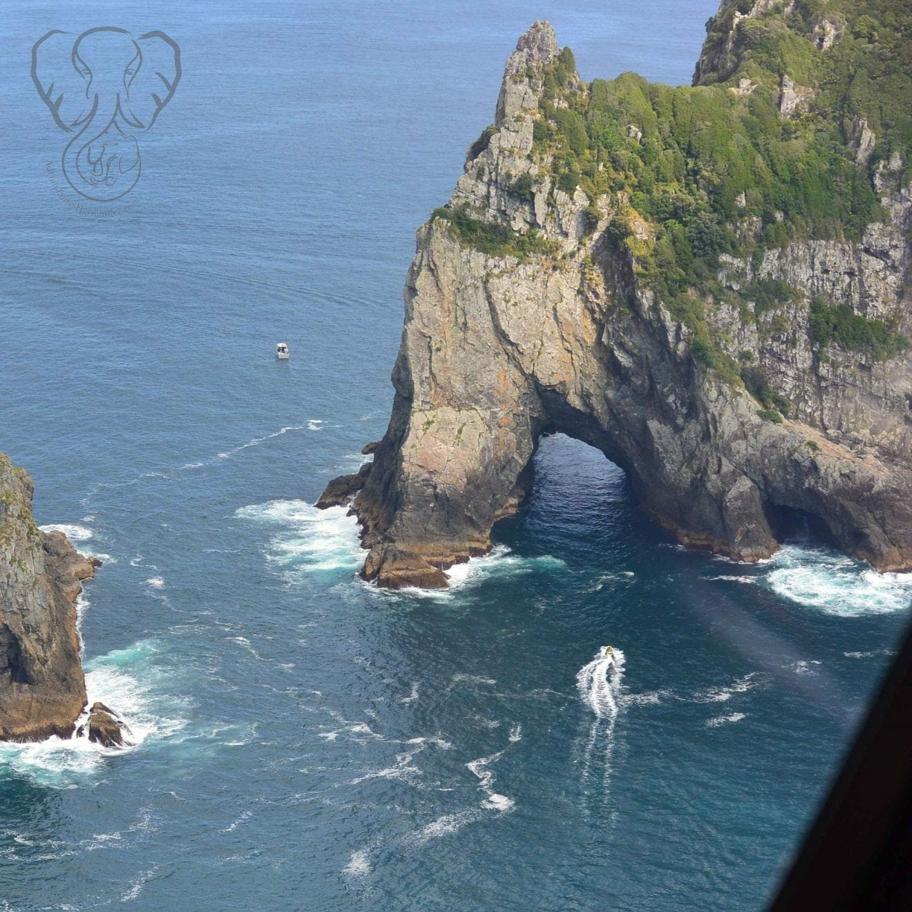 "Famous rock formation in the Bay of Islands, New Zealand. The feature is called Piercy Island, and is known for the ""Hole in the Rock,"" but it looks like an elephant to me (Miranda Hernandez)"