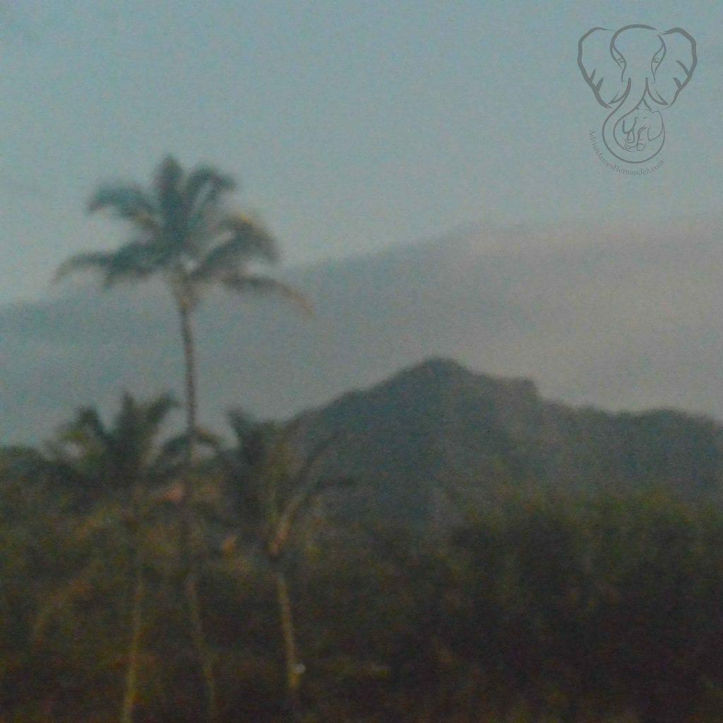 Mountains of Kaua'i, Hawai'i (Miranda Hernandez)