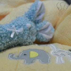 The first blanket and baby toy Miranda purchased for Peanut (Miranda Hernandez)