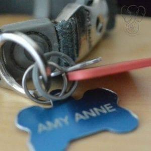 Amy's collar (Miranda Hernandez)