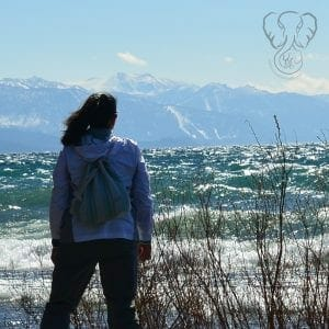 Miranda on the shore of Lake Tahoe, California (photo used with permission)