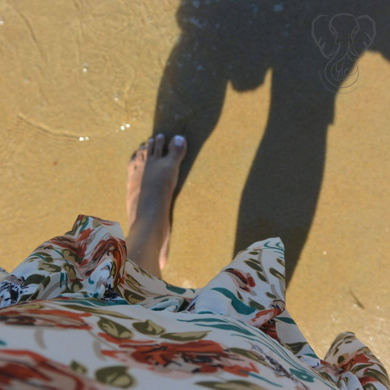 Miranda on the California coast (Miranda Hernandez)