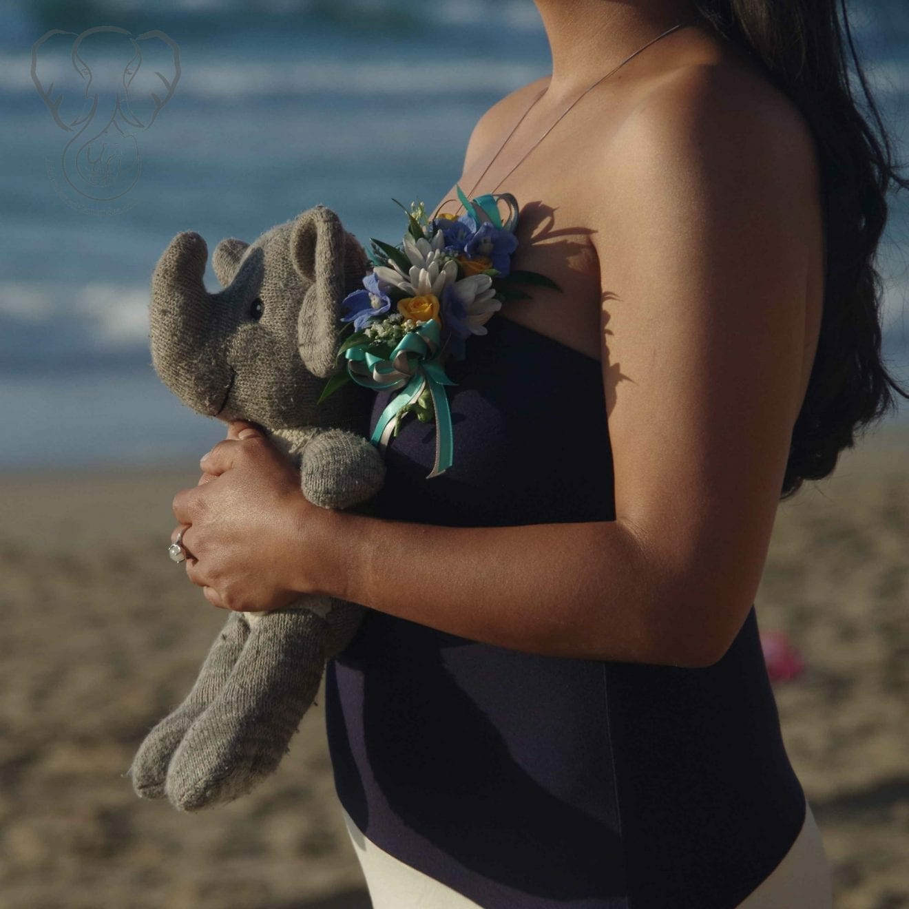 Miranda and Adrian's Elephant on the California coast (Synch Media)