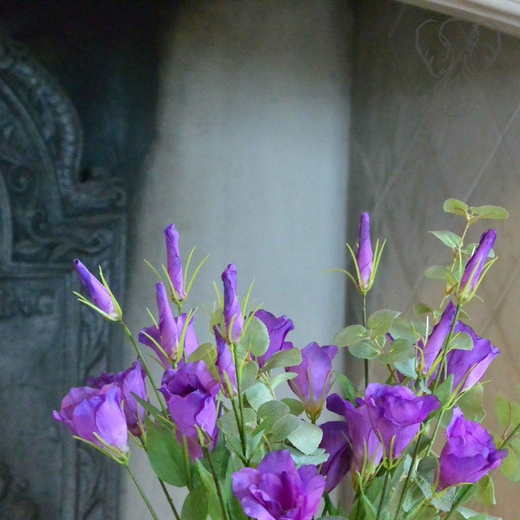 Blue dawnflowers at St Katharines's Parmoor, Buckinghamshire, England (Miranda Hernandez)