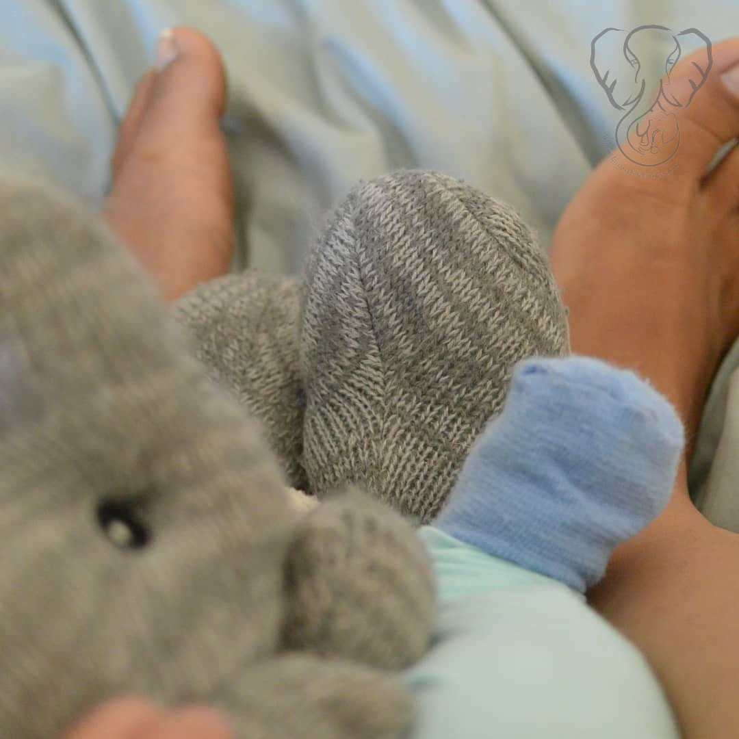 Miranda's and Peanut's feet with Adrian's elephant